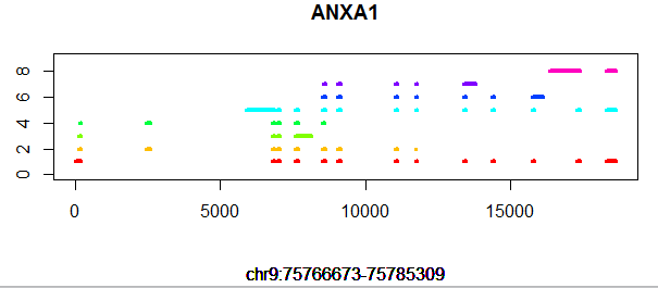 ANXA1-gene-structure.png